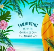 彩色夏季大海和花草框架