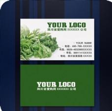 绿色 蔬菜 名片 设计 cdr