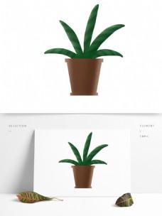 小清新盆栽植物花瓶