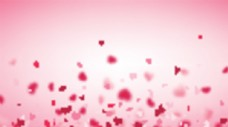 红色飞舞的爱心背景