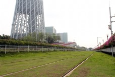 广州塔脚下草地红花铁轨