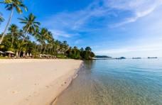洁净的沙滩