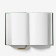 书籍展示样机