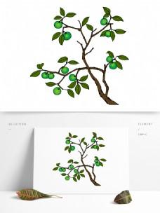 手绘青柑树设计图稿