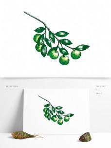 手绘小青柑失量元素图稿(可上色)