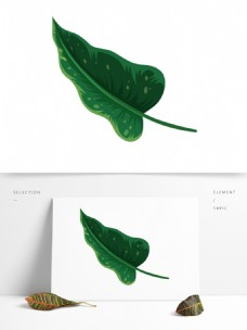 卡通绿叶装饰素材