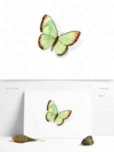 小清新水彩夏季昆虫蝴蝶装饰元素