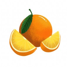夏季橘色平面设计橘子