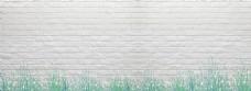 白色砖头背景墙和小草