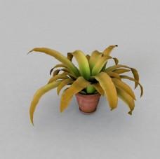 C4D模型花盆