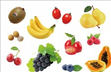 手绘水果矢量元素