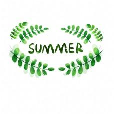 夏季清新植物边框png免抠图