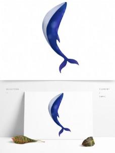 蓝色海洋鲸鱼插画