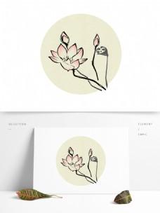 荷花中国画花鸟水墨画写意莲蓬白描花卉莲花