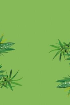 绿色唯美自然树叶背景图