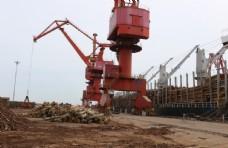 港口 吊车  木头  辐射松