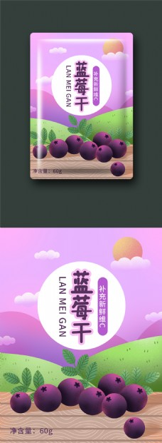 新鲜蓝莓干插画绘画包装设计