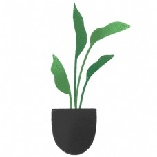 手绘盆栽植物叶子