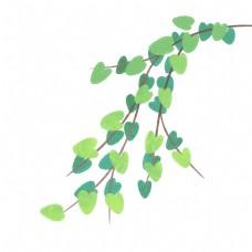 植物藤蔓绿色叶子