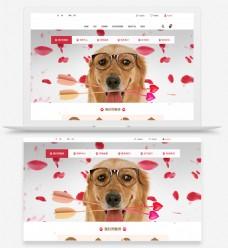 网页UI一屏样机