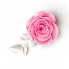 粉色玫瑰花装饰