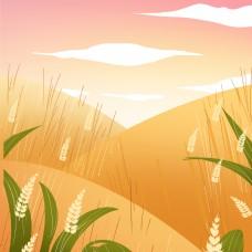 金黄色的田野背景图