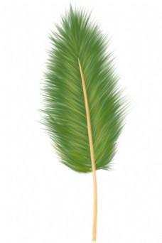 一根绿色羽毛
