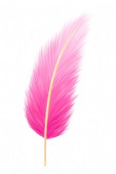 漂亮红色羽毛