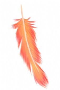 红色唯美羽毛