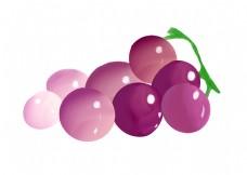 紫色新鲜葡萄