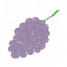 紫色葡萄水果