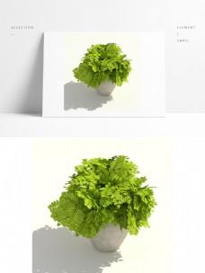 室内通用绿植盆栽模型