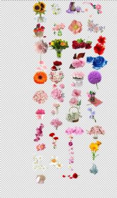 花朵鲜花漂亮高清手绘精致时尚