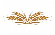 黄色麦子生长
