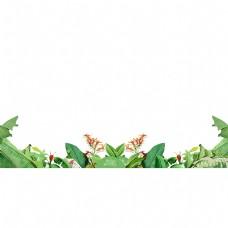 春天绿色植物