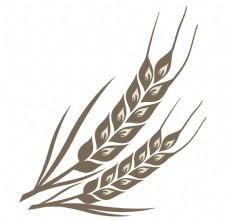 黑色麦子麦穗