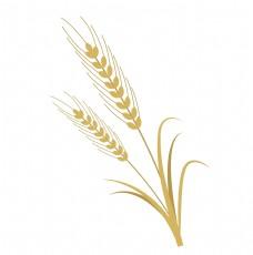 黄色农作物麦子