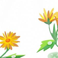 卡通雨后的菊花免扣图