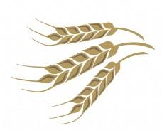 黄色麦子麦穗