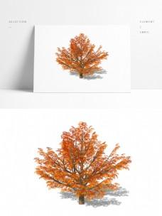 一颗秋景树精致su模型