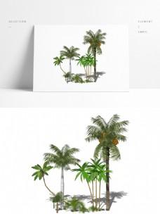 3d热带植物组团模型