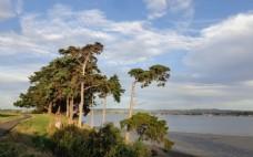 奥克兰海滨自然风光