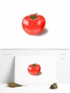 手绘蔬菜西红柿矢量图