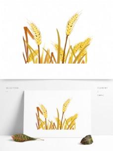 手绘卡通丰收麦子png元素