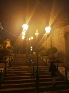 葡国风情灯
