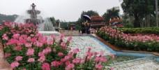 广州云台花园绝美风景