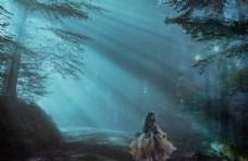 森林图片光线图片创意