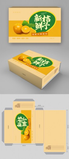 简约大气桔子水果包装礼盒设计