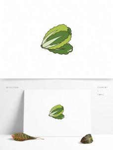 手绘矢量白菜元素