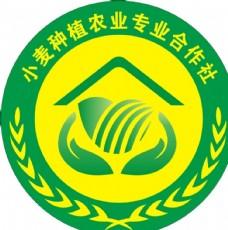 小麦种植农民专业合作社标志